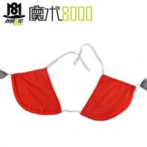 Silk To Bra, Silk To Underwear
