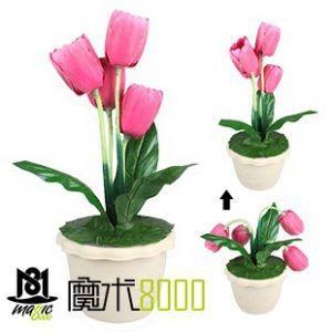 Animated Tulip