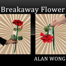 The Breakaway Flower